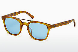 太阳镜 Web Eyewear WE0166 A53 - 哈瓦那, Yellow, Blond, Brown
