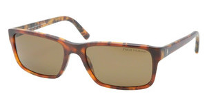 Polo PH4076 543583 POLAR BROWNMATTE BI HAVANA