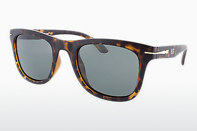 太阳镜 HIS Eyewear HP78100 2