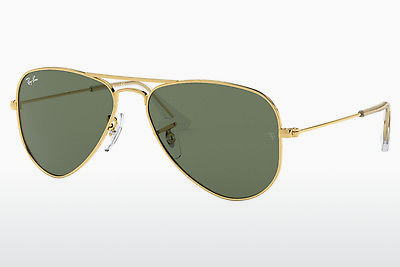 太阳镜 Ray-Ban Junior RJ9506S 223/71 - 金色