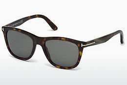太阳镜 Tom Ford Andrew (FT0500 52N)