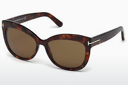 太阳镜 Tom Ford Alistair (FT0524 54H)