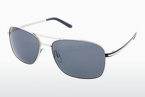 太阳镜 HIS Eyewear HP64101 3