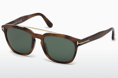 太阳镜 Tom Ford Holt (FT0516 53N)